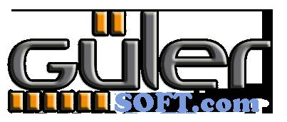 WebTasarım, Hosting Domain Hizmetleri